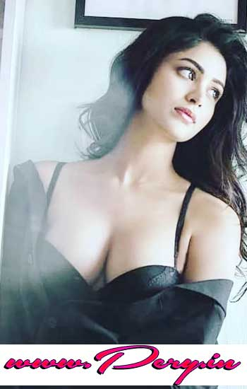 VIP Call Girls in Karol Bagh